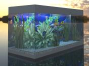 Rio 180 Aquarium