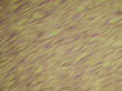 decoración de estuco textura