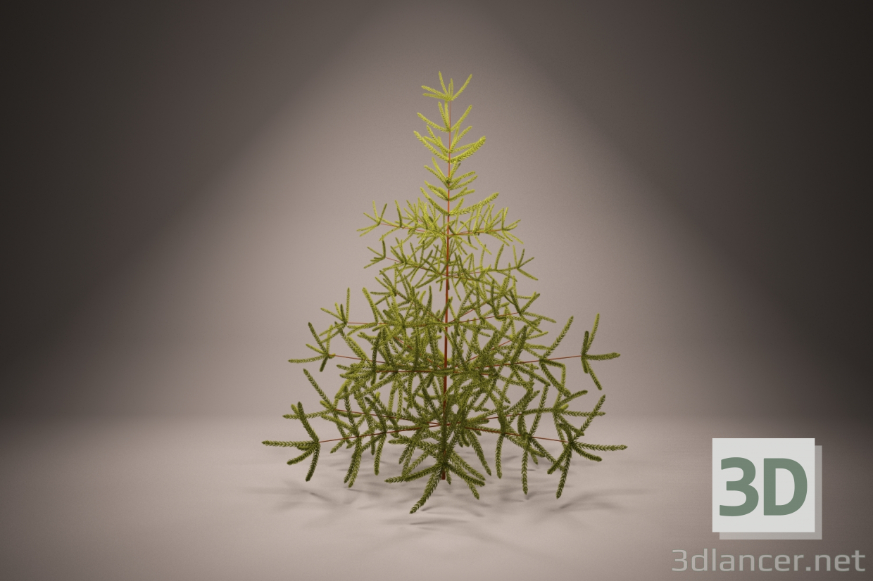 3d Christmas tree, spruce, spruce, Christmas tree, conifer model buy - render