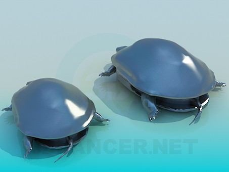 3d model Turtles - preview