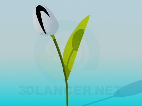 modelo 3D Tulip - escuchar