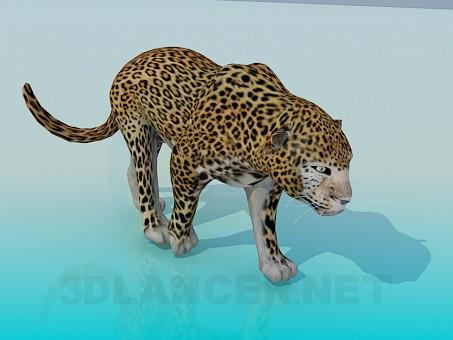 modello 3D Leopardo - anteprima