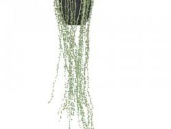 Плетуча квітка