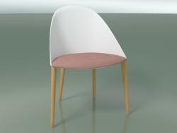 2205 कुर्सी (4 लकड़ी के पैर, एक तकिया के साथ, PC00001 पॉलीप्रोपाइलीन, प्राकृतिक ओक)