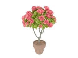 árbol de la azalea