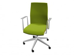 Office Chair with armrests fixed