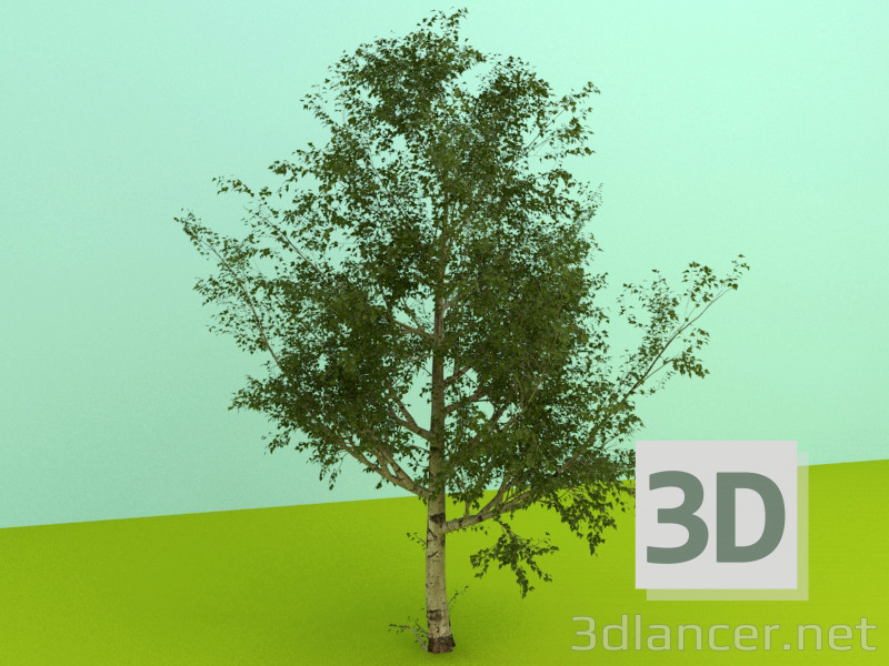 3d model trees - preview