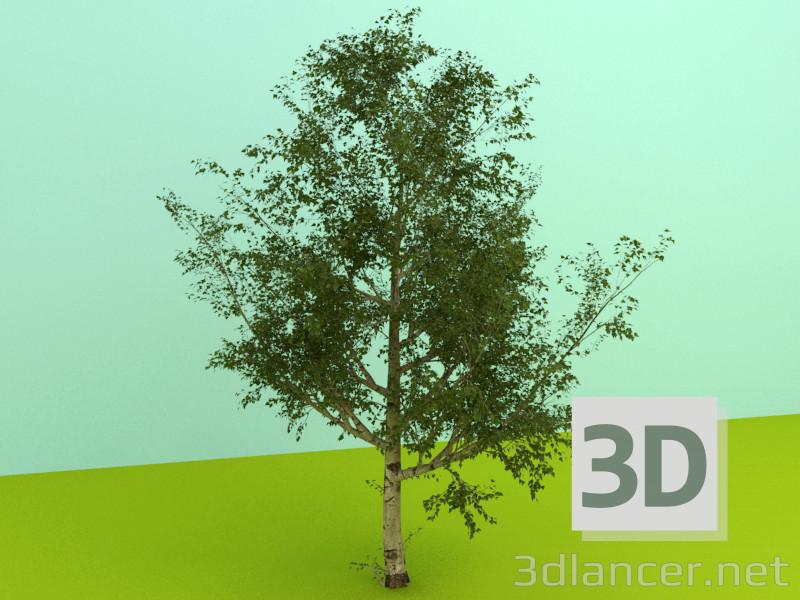 Modelo 3d Plantas - preview