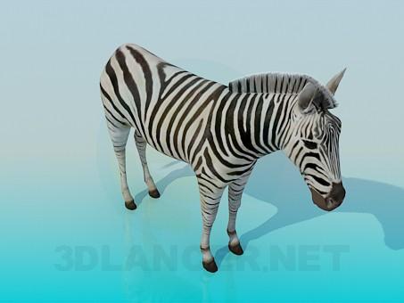 Scarica di Zebra modello gratuito di modellazione 3D