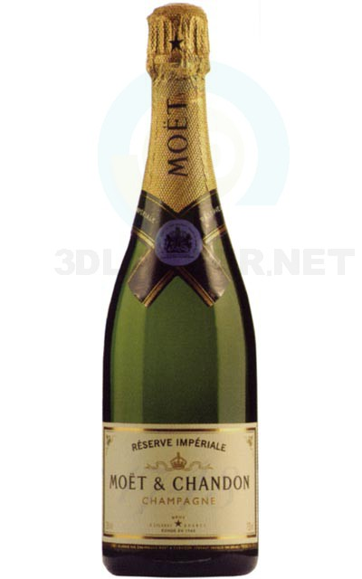3d model Bottle of champagne - preview