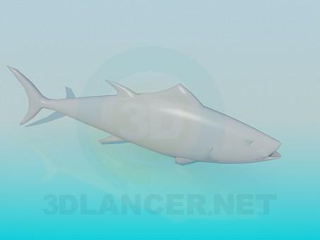 3d modeling Fish model free download
