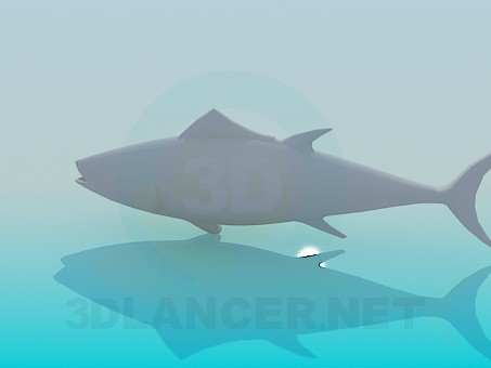3d model Fish - preview