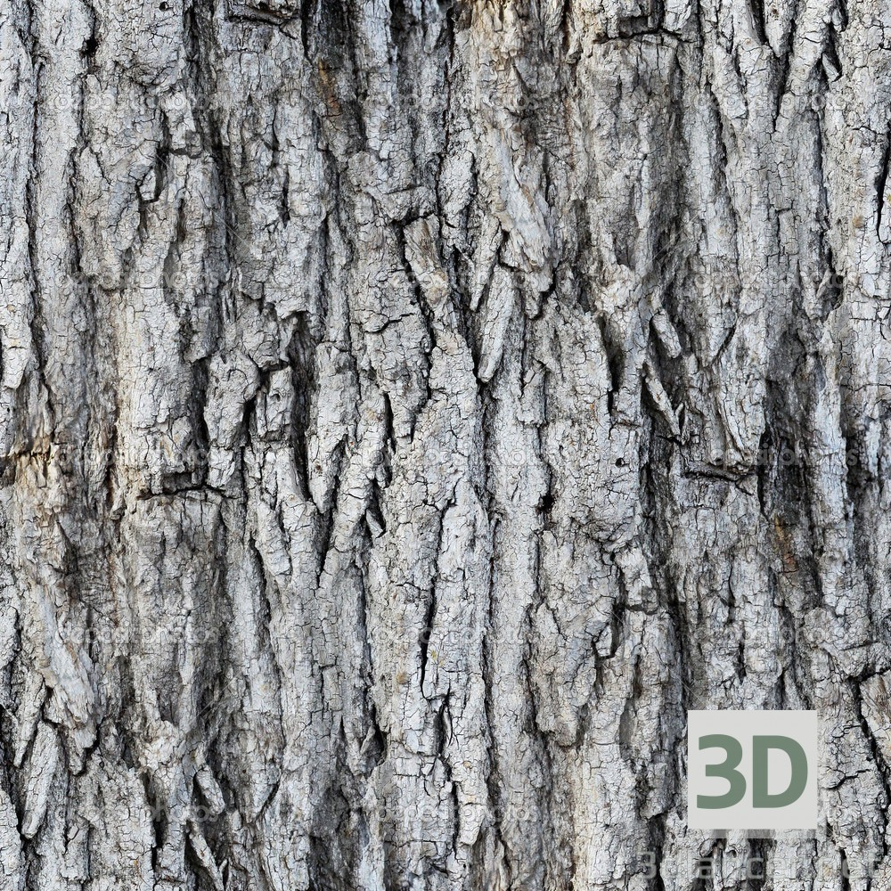 Tree bark download texture - thumbs