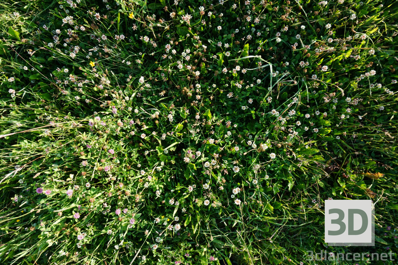 Трава завантажити текстуру - привью