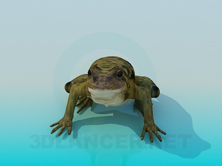 3d model Toad - preview