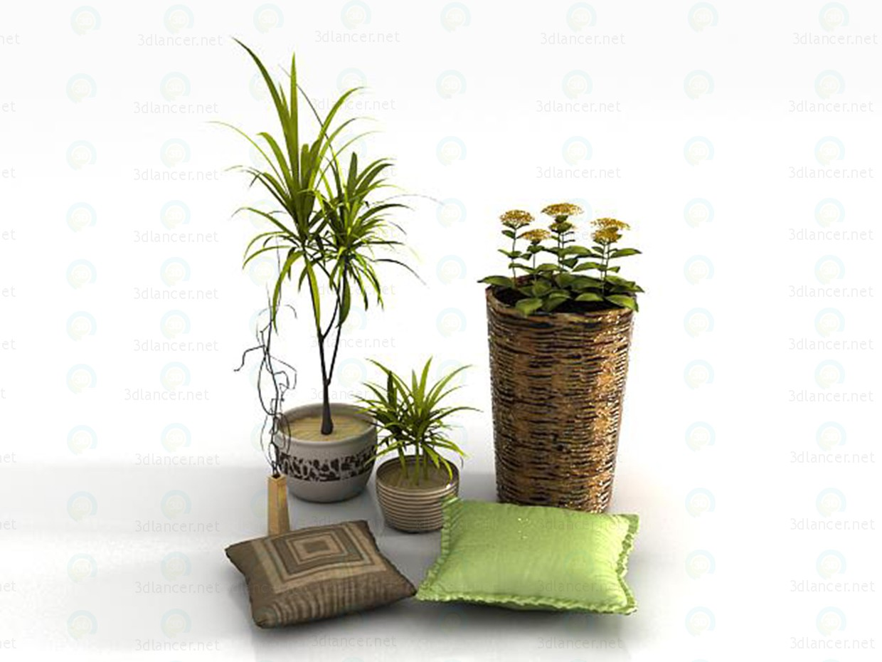 3d model Houseplants + Accessories - preview