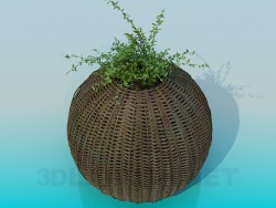 Basket for the flowerpot