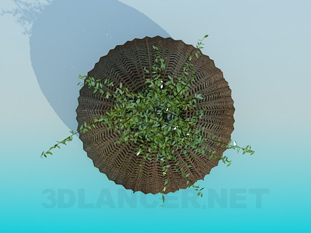 3d модель Плетенная корзина для вазона – превью