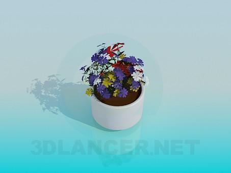 modelo 3D Maceta con flores - escuchar
