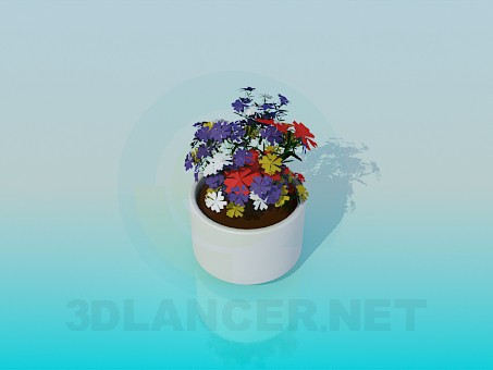 3d model Flower pot with flowers - preview