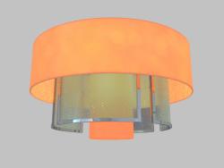 Lámpara de techo (4305PL)