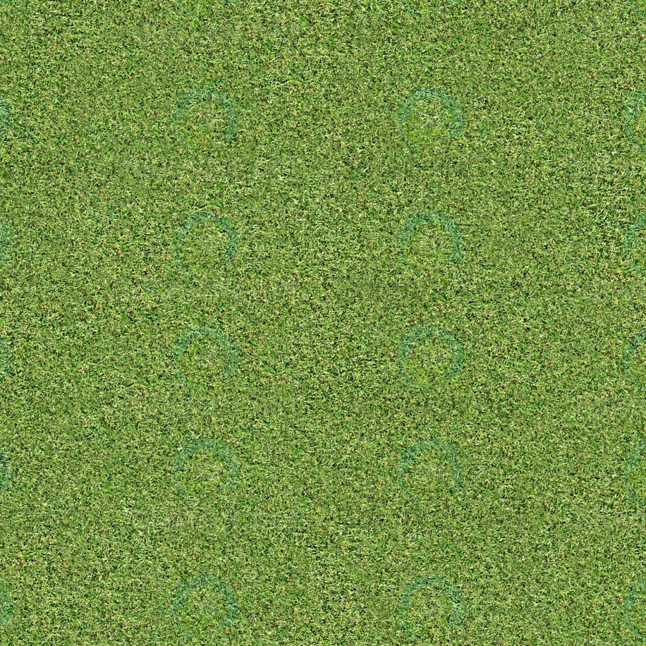 Download Texture Grass For 3d Max Number 11542 At 3dlancer Net