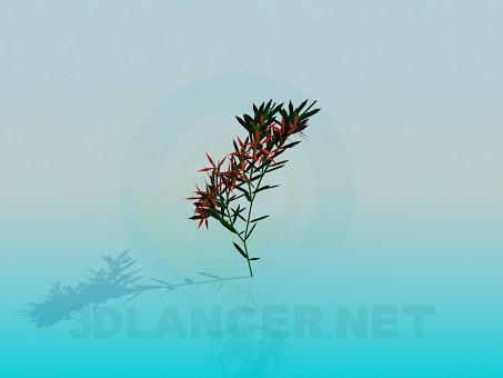 3d model Branch - preview