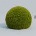 3d Cupresus Ball model buy - render