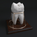 3d Tooth_Souvenir model buy - render