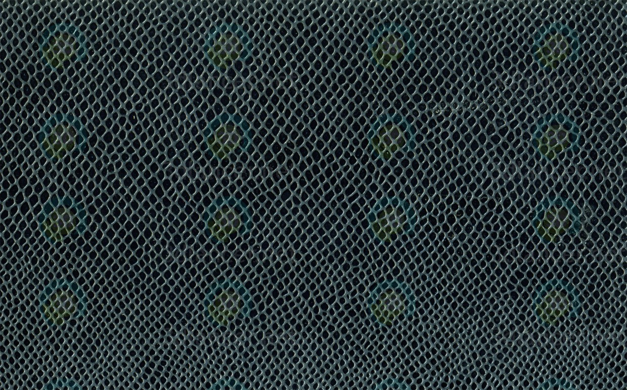 Texture Reptile skin free download - image