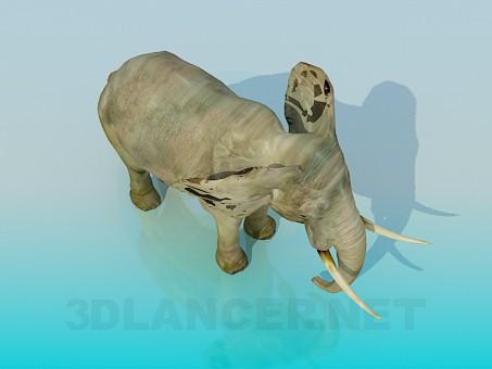 modelo 3D Elefante - escuchar