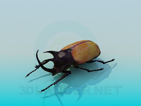 3d model Beetle - preview