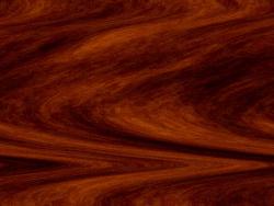 cèdre rouge
