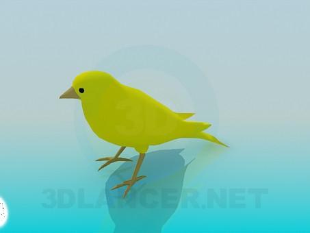 3d model Bird - preview