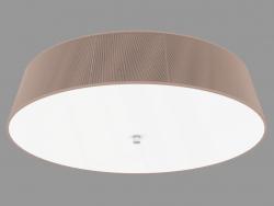 Ceiling light (C111012 6brown)