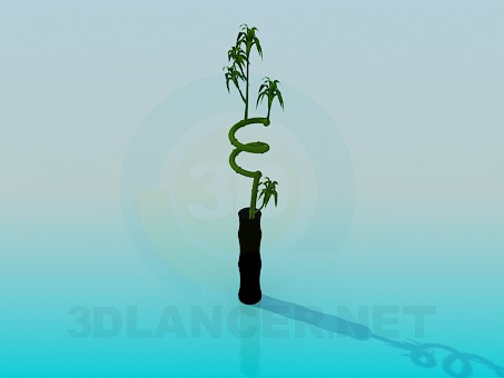 3d model Direct vase for flower - preview