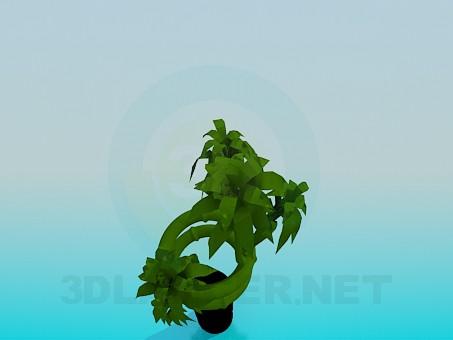 3d модель Прямая ваза для цветка – превью