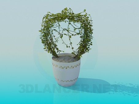 3d model Pot with flower - preview