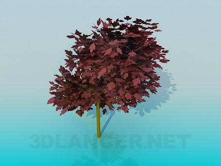 modelo 3D Árbol con hojas rojas - escuchar