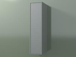 Pensile con 1 anta (8BUAСDD01, 8BUAСDS01, Silver Grey C35, L 24, P 36, H 96 cm)