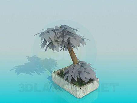 modelo 3D Mini árbol - escuchar