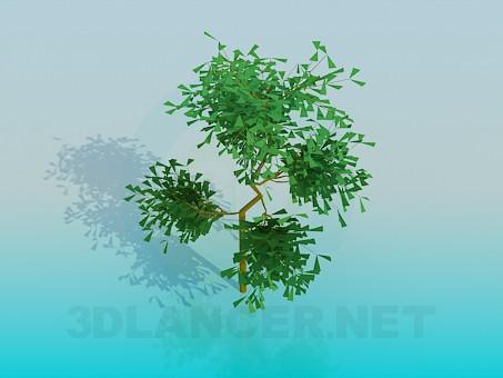 3d модель Небольшое дерево – превью
