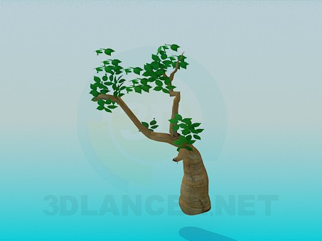 3d model Tree - preview
