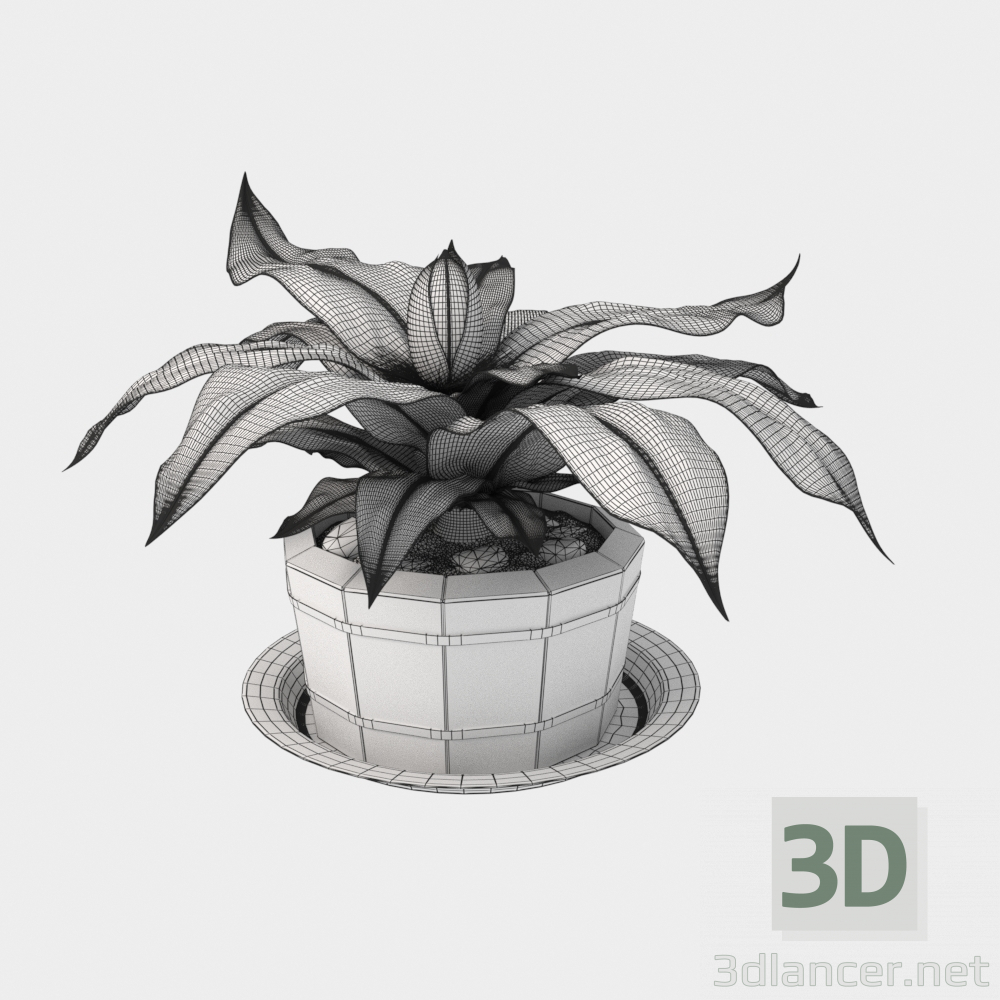 3d model Plant in a wooden pot - preview