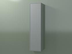 Pensile con 1 anta (8BUBECD01, 8BUBECS01, Silver Grey C35, L 36, P 24, H 144 cm)
