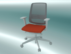 Fauteuil (250SFL P61, support lombaire B)
