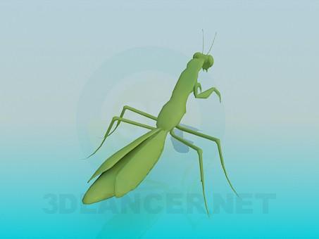 modelo 3D Mantis religiosa - escuchar