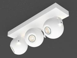 Overhead Ceiling Light Lamp (DL18395 13WW-White)