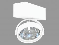 Overhead Ceiling Light Lamp (DL18407 11WW-White)