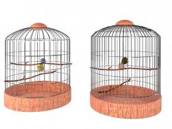 Deux cages à oiseaux
